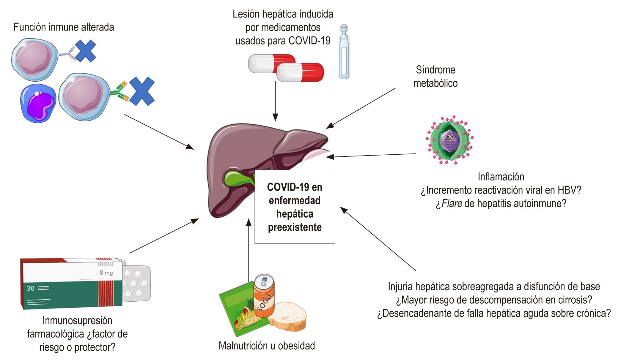 Figura 2. COVID-19 en enfermedad hepática preexistente