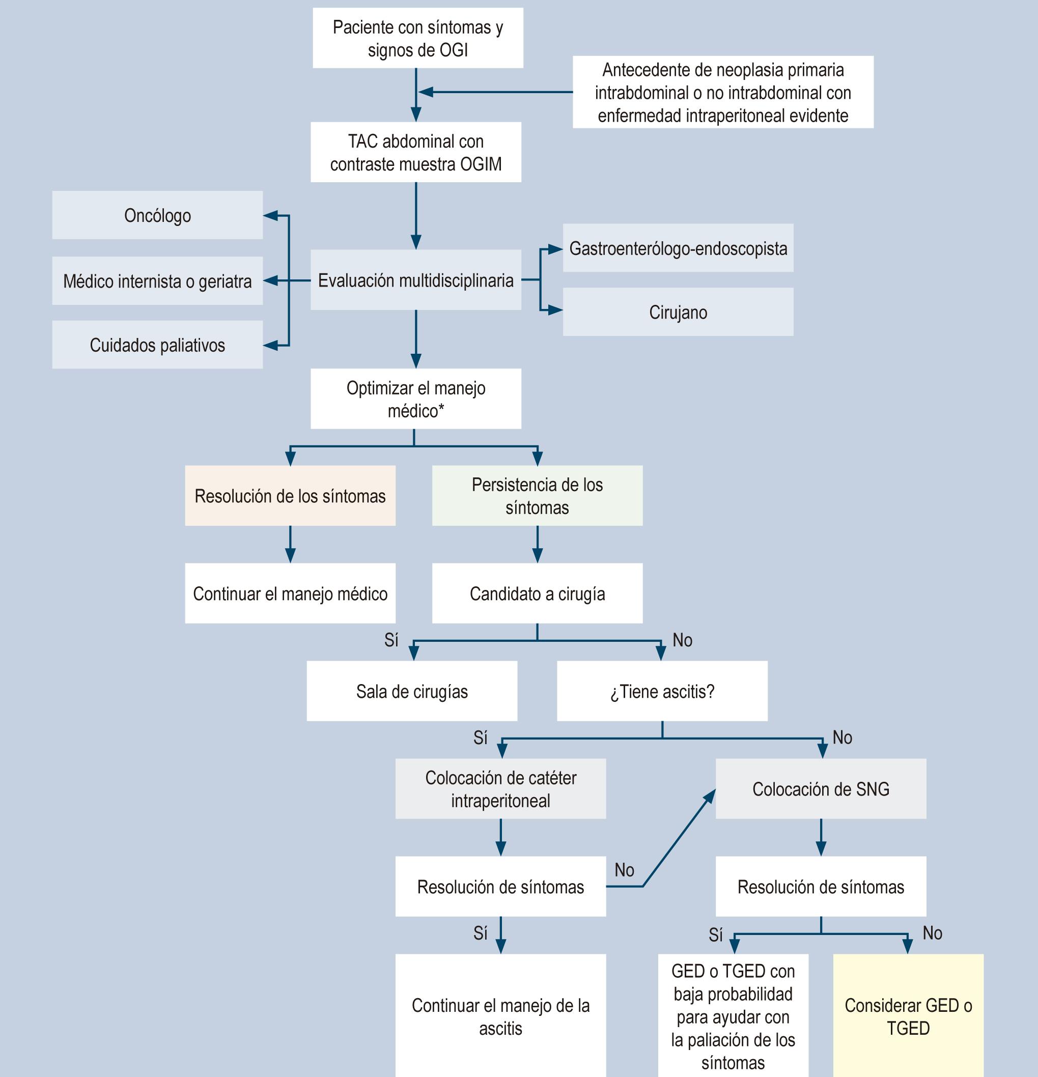 Figura 1. Algoritmo de manejo de OGIM