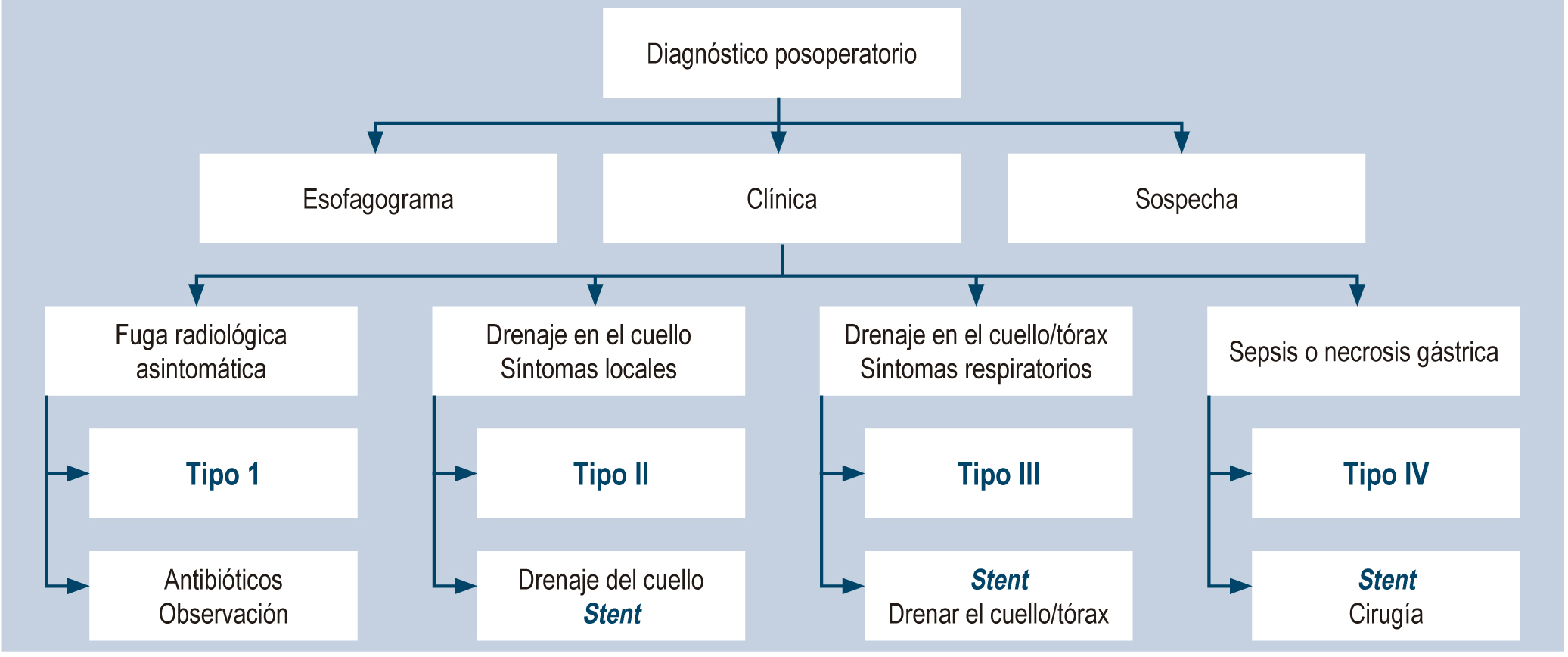 Figura 1. Algoritmo para el diagnóstico y manejo de las fístulas esofagogástricas posoperatorias
